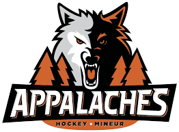 Hockey mineur Appalaches