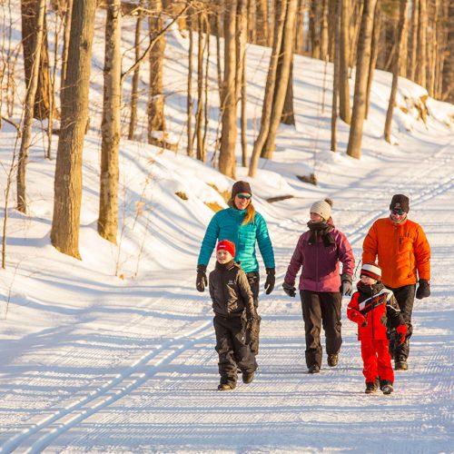 Sentier multifonctionnel – pistes de ski de fond